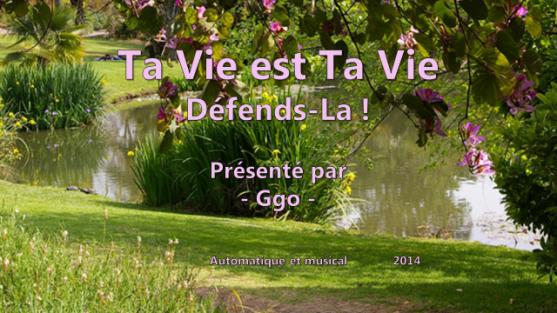 217-4 - Ta vie est Ta vie - Ggo 1