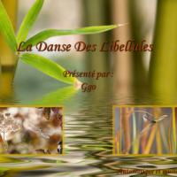 La Danse Des Libellules