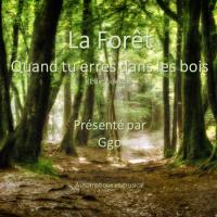La Forêt - Quand Tu Erres Dans Les Bois