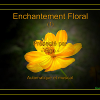 Enchantement Floral (1)