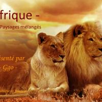 L'Afrique - Animaux et Paysages Mélangés
